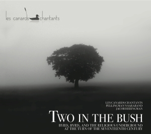 two-in-the-bush-cover